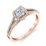 engagement28